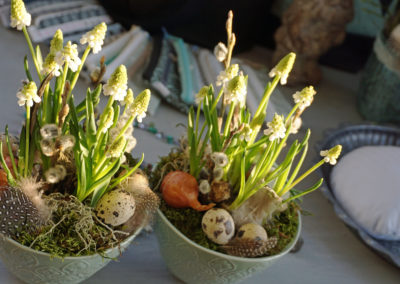 ShopF b003 - gepflanzte kleine Lieblinge/Blumen - auf Bestellung oder im Laden